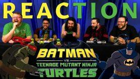 Batman VS TMNT Trailer #1 Reaction