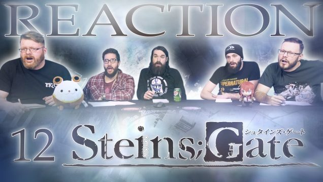 Steins Gate 12