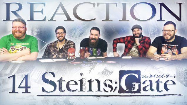 Steins Gate 14