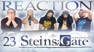 Steins Gate 23