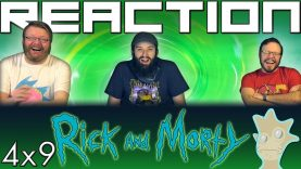 Rick and Morty 4×9 Reaction