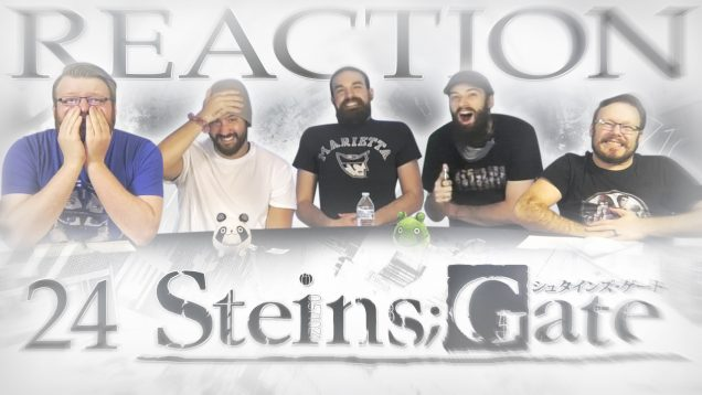 Steins Gate 24