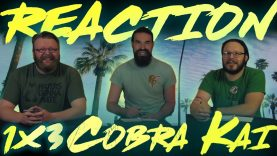 Cobra Kai 1×3 Reaction EARLY ACCESS