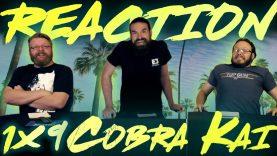 Cobra Kai 1×9 Reaction