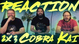 Cobra Kai 2×3 Reaction