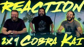 Cobra Kai 2×9 Reaction