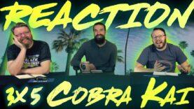 Cobra Kai 3×5 Reaction