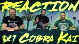 Cobra Kai 3×7 Reaction