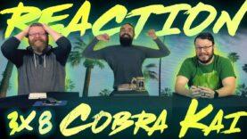 Cobra Kai 3×8 Reaction